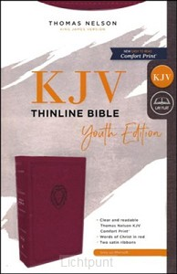 KJV thinline bible youth edition burgun