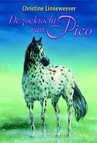 Zoektocht van Pico