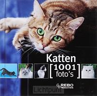 Katten 1001 foto s