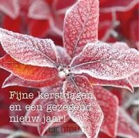 Kerstkaart winterblad fijne kerstdagen