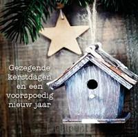 Kerstkaart vogelhuisje en ster gezegende
