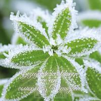 Kerstkaart gezegende kerstd groen bevror