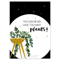 You can never have to many plants!