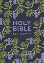 NIV Pocket Bible Colour Paperback