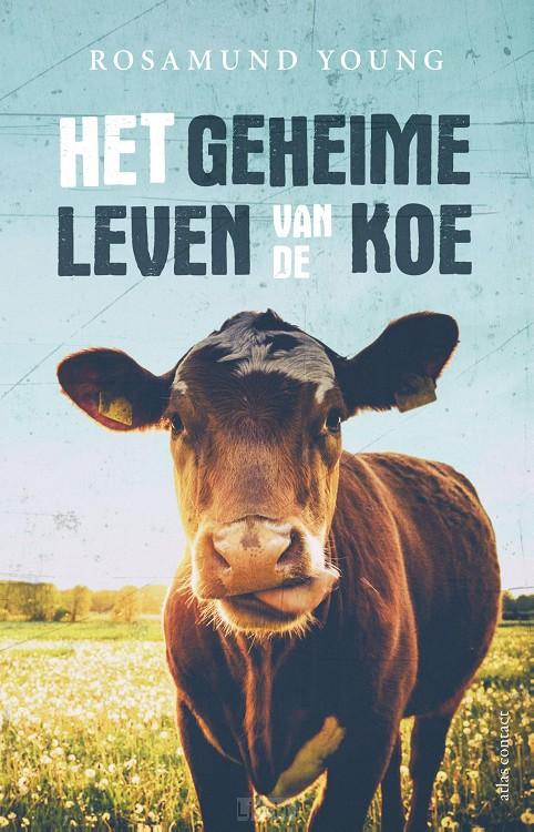 Het geheime leven van de koe