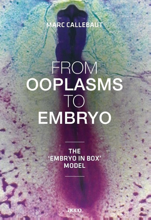 From ooplasms to embryo