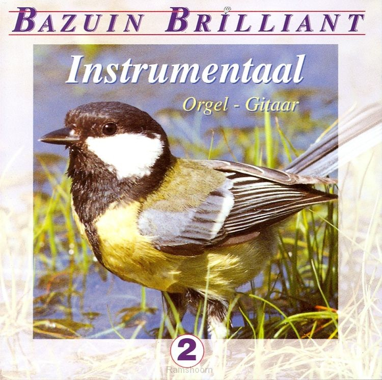 BAZUIN BRILLANT INSTRUMENTAAL 2