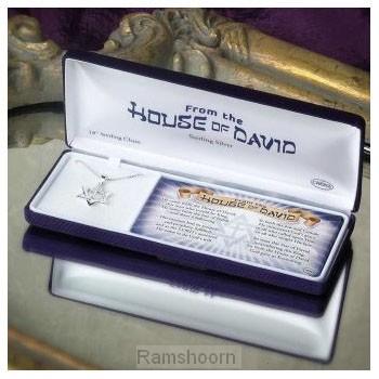 Hanger davidster/kruis m kett zilver box