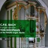 6 Organ Sonatas at the Amalia Organ