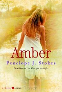 Amber - eBoek