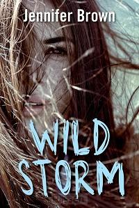 Wild storm - eBoek