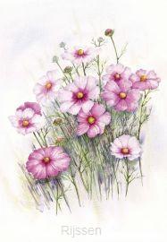 Wenskaart roze bloemen