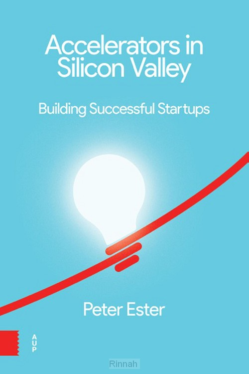 Accelerators in Silicon Valley:
