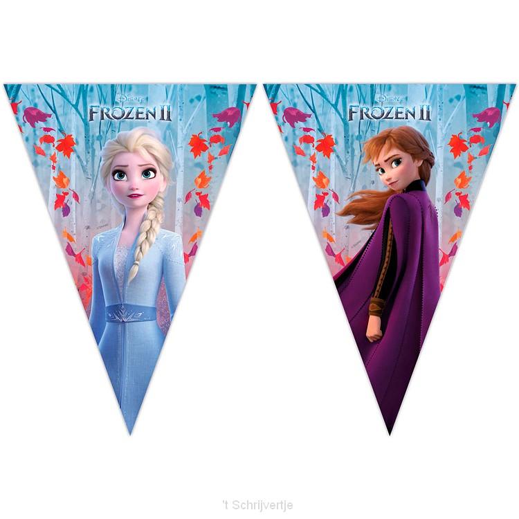 Disney Frozen 2 Vlaggenlijn, 2mtr.