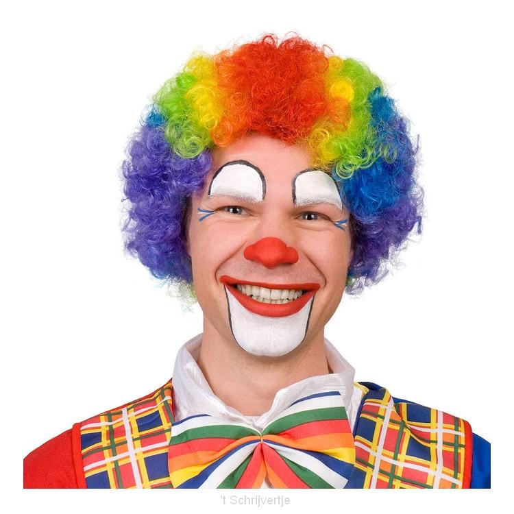 Pruik Clown Multikleur Volwassenen