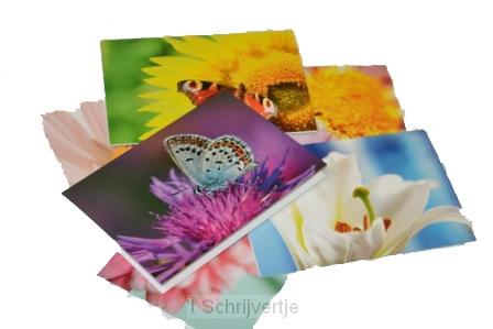 Bloemkaarten 3 stuks met enveloppe