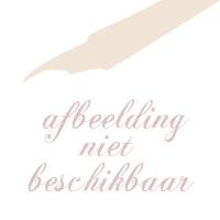 Bijbelhoes opdruk goud kruis dun 5cm
