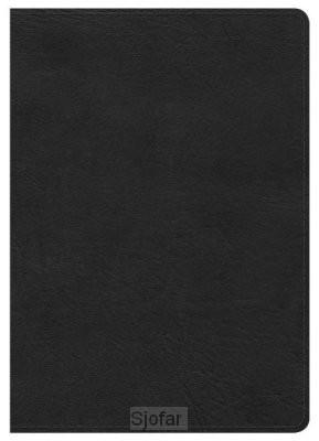 Compact bible black leatherlook LP