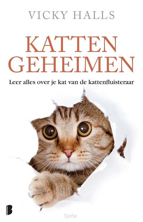 Kattengeheimen