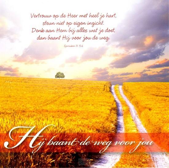 Prentbriefkaart Hij baant de weg voor jo