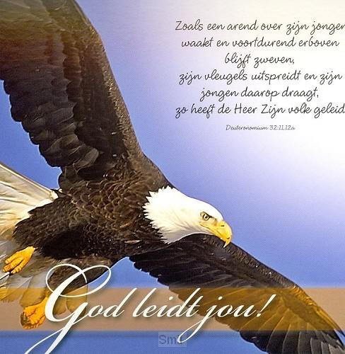 Prentbriefkaart God leidt jou