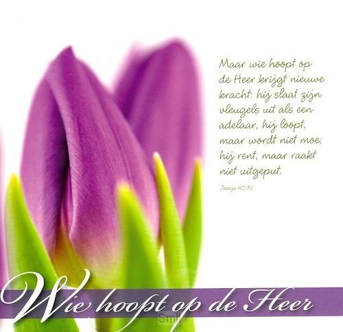 Wenskaart wie hoopt op de Heer