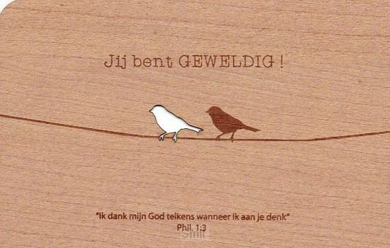 Kaart hout vogels jij bent geweldig set6