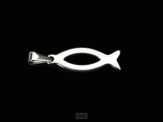 Hanger vis staal zilverkleurig