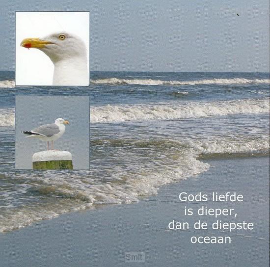 Wenskaart zee