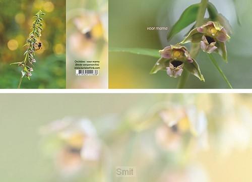 Panoramawenskaart orchidee - voor mama