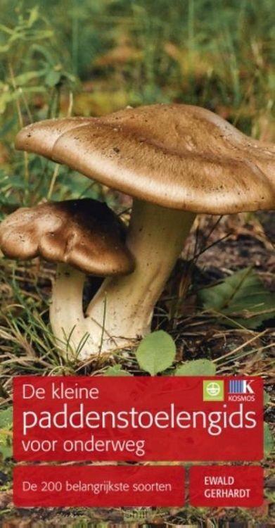 Kleine paddenstoelengids voor onderweg