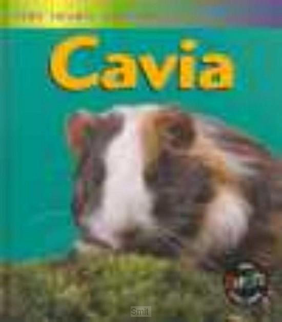 Leven van een cavia