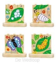 Blokpuzzel Van Rups naar Vlinder