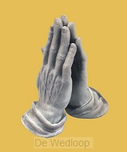 Beeld du 01 biddende handen grijs durer
