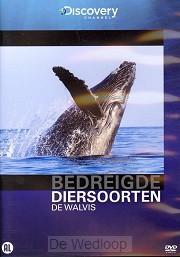 Walvis Bedreigde diersoorten