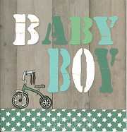 Wenskaart baby boy
