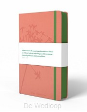 BGT Compact roze