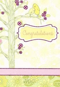 Congratulations (Congratulations - 6 pie