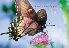 Wenskaart God is oneindig goed voor jou
