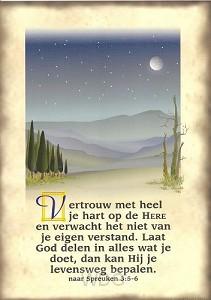 Poster a4 spreuken 3:5,6