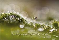 Wenskaart Gods goedheid is elke dag