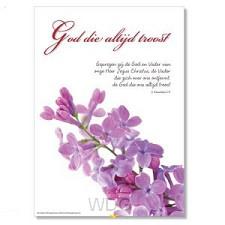 Poster God die altijd troost