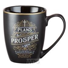 Plans to prosper you - Jer 29:11