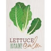 Lettuce remain calm