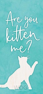Are you kitten me?