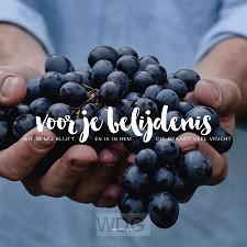 Kaart belijdenis johannes 15:5 HSV druiv