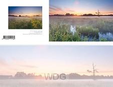Panoramawenskaart zt early summer