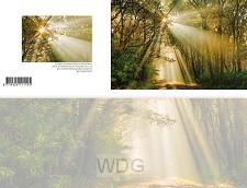 Panoramawenskaart zt gouden zonnestralen