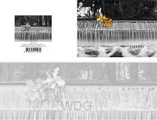 Panoramawenskaart rouw zt waterval