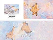 Panoramawenskaart zt eikenblad